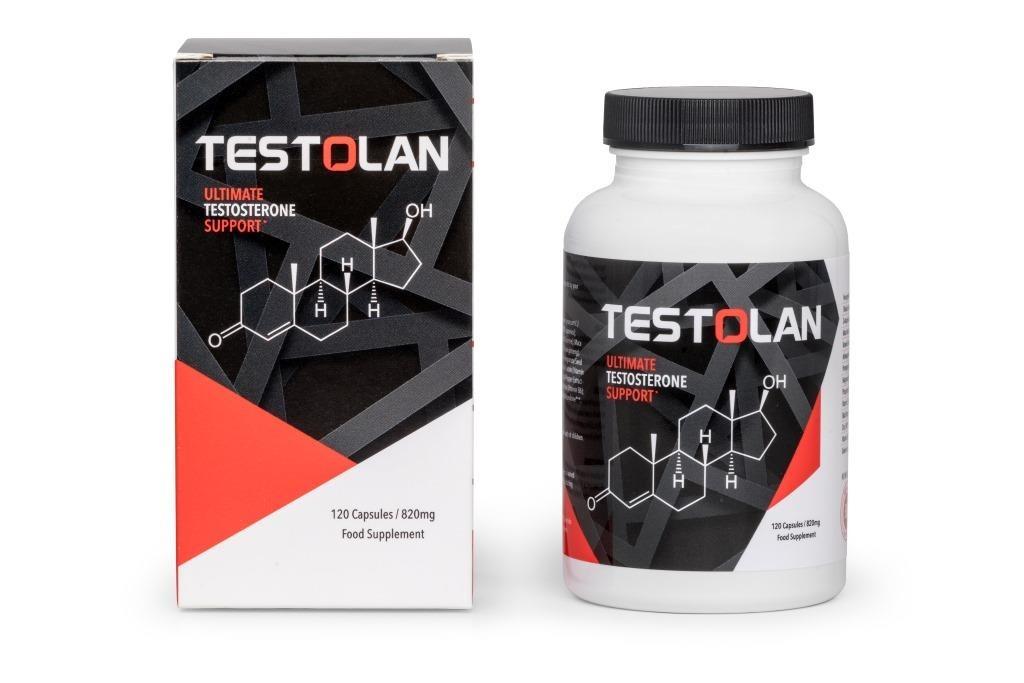 Testolan_Pro2